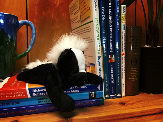 Desk Skunk